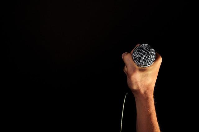 głosowe hasło dostępu mikrofon